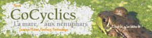 corrections éditoriales - bandeau CoCyclics
